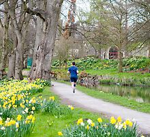Man running in Bute Park, Cardiff by photoeverywhere