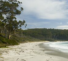 beach fortescue bay by photoeverywhere