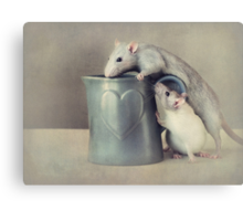 Jimmy and Snoozy Canvas Print