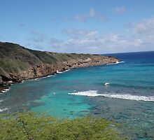 Hanauma Bay Surf  by thebarnowl