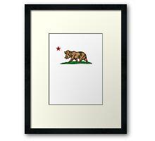 California Bears Framed Print