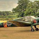 Bücker Bü 181 by larry flewers