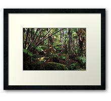 hawaiian rainforest vegetation Framed Print