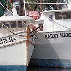 A Seafaring Pair  by John  Kapusta