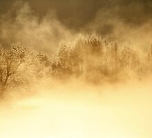 17.3.2014: Cold Morning at Loimijoki River II by Petri Volanen