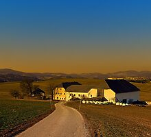 Country road, scenery and sunset | landscape photography by Patrick Jobst