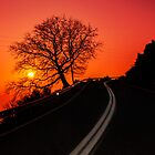 Follow Me  by Thrasivoulos