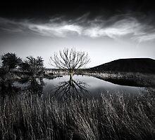 Elmley Marshes.  by Ian Hufton
