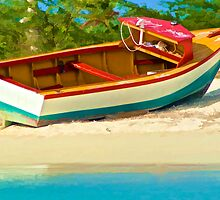 Beached Fishing Boat of the Caribbean by David Letts