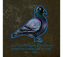 Nikola Tesla's Pigeon Photographic Print