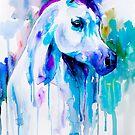 Arabian horse by Slaveika Aladjova