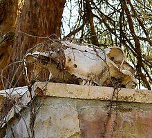 Skull Topper by WildestArt