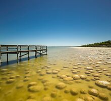 Thrombolites, Lake Clifton WA by Penny Lord