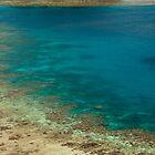 fiji sailing catamaran by photoeverywhere