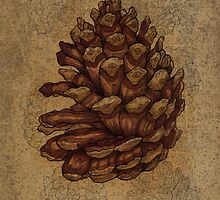 Textured pinecones by Carl Conway