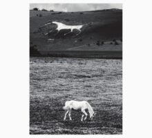 White Horses by Vincent Abbey