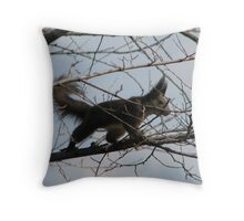 Squirrel with a Bad Hair Day on Our property in Romania Throw Pillow