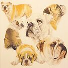 Bulldog by BarbBarcikKeith