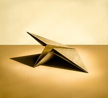 Paper Airplanes of Wood 7 by YoPedro