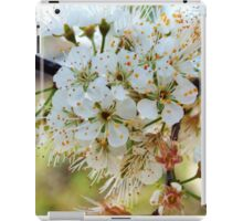 Tree blossoms iPad Case/Skin