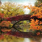Bridges Of Central Park by Jessica Jenney