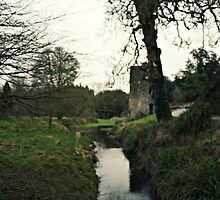 Blarney Castle  by Shelby Peske