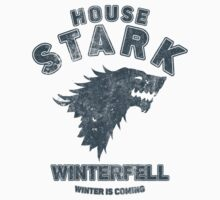 Game of Thrones House Stark 2 by nofixedaddress