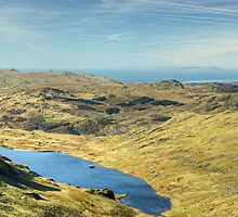The View West From Levers Hause by Jamie  Green