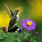 Garden Lights Hummingbird by Christina Rollo