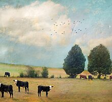 """Cyan Skies"" by Cheryl Tarrant"