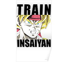 Bardock Trains Insaiyan Poster