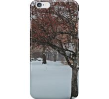 Snowflakes Dance iPhone Case/Skin