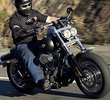 Harley Davidson Motorcycle Rider by jimrac