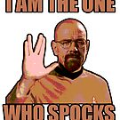 I Am The One Who Spocks by GrimDork