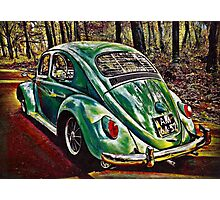 Spring Green Photographic Print