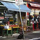 Black Dog - Kensington Market by Marie Van Schie