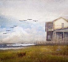"""Sea Dreams"" by Cheryl Tarrant"