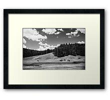 Western Classic Framed Print