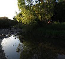 springtide at the river cuale II - rio cuale en la primavera by Bernhard Matejka