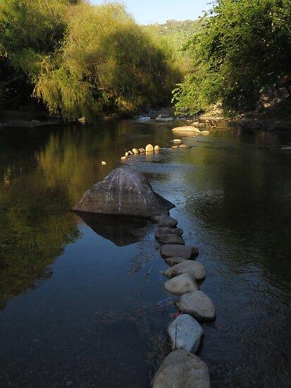 springtide at the river cuale III - rio cuale en la primavera by Bernhard Matejka