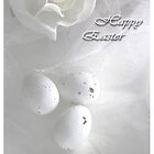 Happy Easter by liesbeth