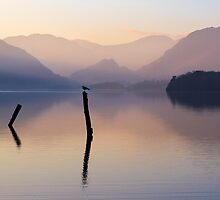 Lakeland Posts II by Jeanie