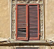 Weathered Red Wood Window Shutters of Tuscany II by David Letts