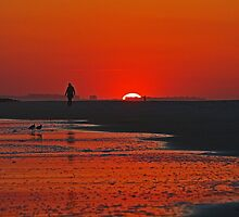 Long Beach NY USA Sunset                             5288 by KarenDinan