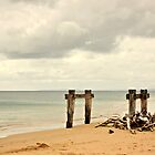 Old livestock jetty by Karen Tregoning
