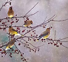 Bring on Spring! by Kathy Weaver