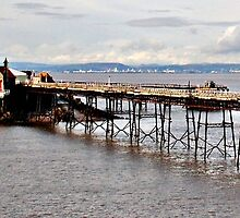 Birnbeck Pier and Island by Photography  by Mathilde
