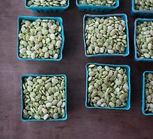 beans in squares by tara romasanta