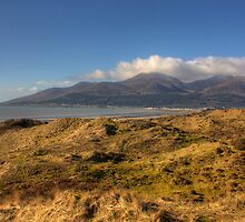The Mourne Mountains from Murlough NNR/ASSI by Jon Lees