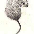 Mouse by Hannah Falvey